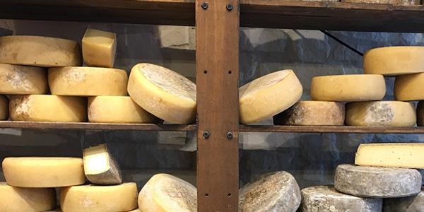 Der typische Käse von Tremosine - das Formaggella
